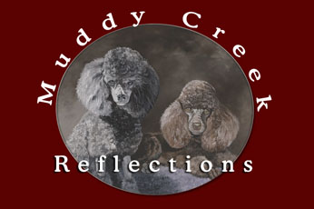 Dog Grooming Videos Archives Muddy Creek Reflections